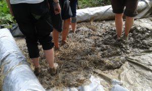 Blanding av leire, sand og halm til hønsehus